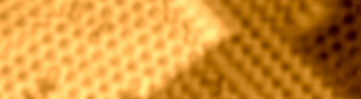 STM Image of Si (100) surface by USM1400